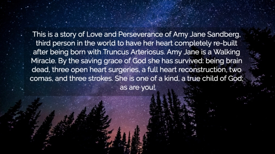 1536557971932-this-is-a-story-of-love-and-perseverance-of-amy-jane-sandberg-third-person-in-the-world